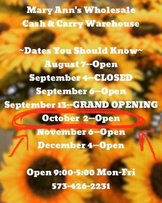 Our next first Saturday opening is approaching quickly! Mark it down! #maryannswholesale #homedecor #seasonalhomedecor #falldecor #christmasdecor #floralribbon #boutiquestyle Not open to the public